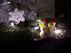 Pics_christmas_021